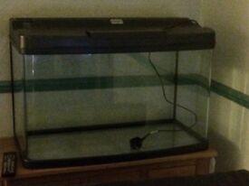 Aquarium curved tank.