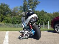 Super scooter clean cut  manquer pas ca !