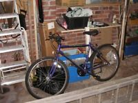 raleigh mission gent's mountain bike