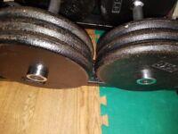Pair of 32.5kg fixed dumbbells .65kg