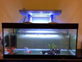 Arcadia fish tank/ aquarium marine light