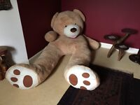 GIANT 8FT COSTCO TEDDY BEAR