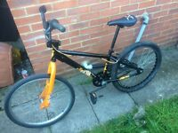 BIG BMX x rated one