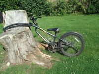 bike tag a long