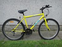 Oscar racing bike, 26 inch wheels, 19 inch frame, 18 gears, yellow