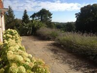 Professional Female Gardener/ Planting Designer, Hastings and surrounding areas in East Sussex