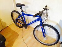 Unisex carrera bike it can be delivered