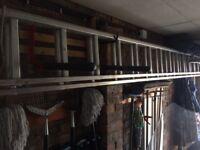 Youngman 2 x 3.5m Aluminium Ladder