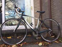 Dolce Elite 51 ladies road bike.