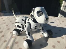 Zoomer robot puppy