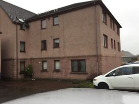 Immaculate two bed flat in Sauchie