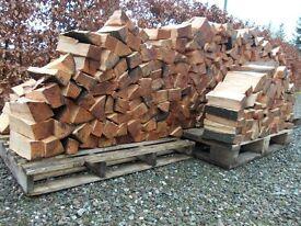logs, firewood, beech