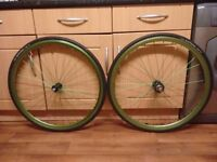 Green 700c Singlespeed/Fixie wheels for sale