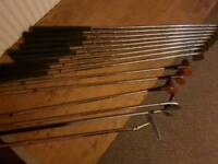 Golf clubs and bag/ trolly