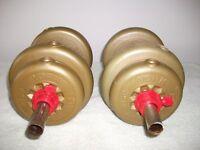 Pair of York dumbells