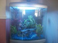 Fish Tank - free standing