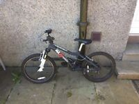 Boys 20 inch ridgeback bike for sale