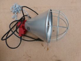 whelping lamp for animals (brand new)