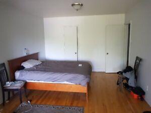 Très bel appartement 3 1/2 sur PieIX (Libre immédiatement)