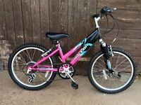 """LITERALLY NEW RALEIGH RAPTOR GIRLS 20"""" WHEELS BIKE COMPLETE WITH STAND"""