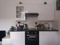 Lovely Studio Flat close to the sea in Brighton