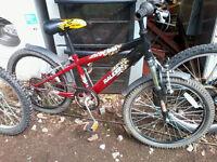 "Raleigh hotrod childs mountain bike 20"" wheels 6 gears"