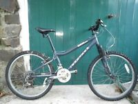 MX Ridgeback Mountain Bike