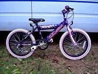 "girls 18"" wheel mountain bike very nice bike fully serviced sparkly purple& pink colour"