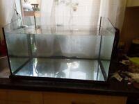 Turtle tank 75 litres