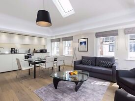 London Piccadilly Circus Lux Apartment - 3br 3ba