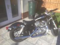 Harley Davidson 883 sportster 100th anniversary