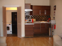 CENTRAL, BRIGHT, SPACIOUS BUT, COSY FULLY FURNISHED ONE BEDROOM FLAT. ALBION ROAD LEITH.