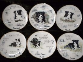 Border Collie 12 Month Plate Collection