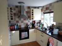 Cosy double bedroom in a beautiful flat in Clifton - No fees