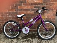 Girls brand new bike