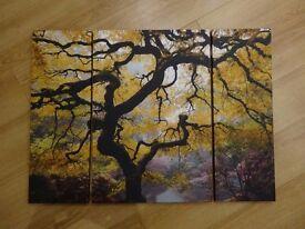 3 split japanese tree canvas
