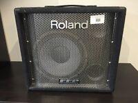 Roland DB500 (200W) Bass Amp