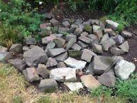 Free Devon rocks