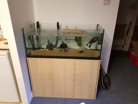 Large Fish Tank with Cabinet, Filter and Heater