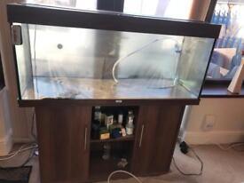 Juwel rio 240 tank and cabinet setup