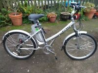 Currie Electro- Drive iZip Electric Bicycle