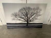 Canvas Print (Tree – Black & White)