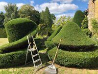 Gardener- Haslemere- £20ph