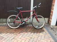 "Radford Sport 21 speed ""hybrid"" pedal cycle quality used 21"" Frame"