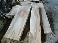 Beech planks/boards/timber/spalted