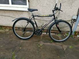 Peugeot mountain bike with large frame
