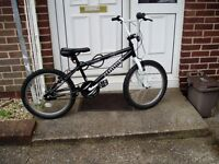 "BMX, 20"" ALLOY WHEELS V-BRAKES, PROFESSIONALLY SERVICED."