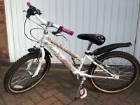 "Girls 20"" wheel Raleigh bicycle"