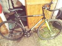 Road bike (needs tlc)