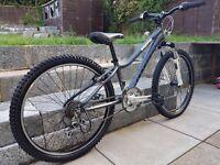 Ridgeback MX24 Childs mountain bike